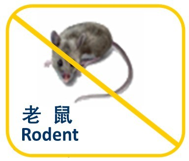 Rodent Photo1